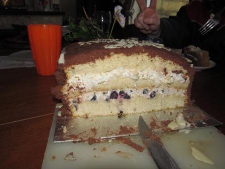Blaubeer-Schoko-Torte