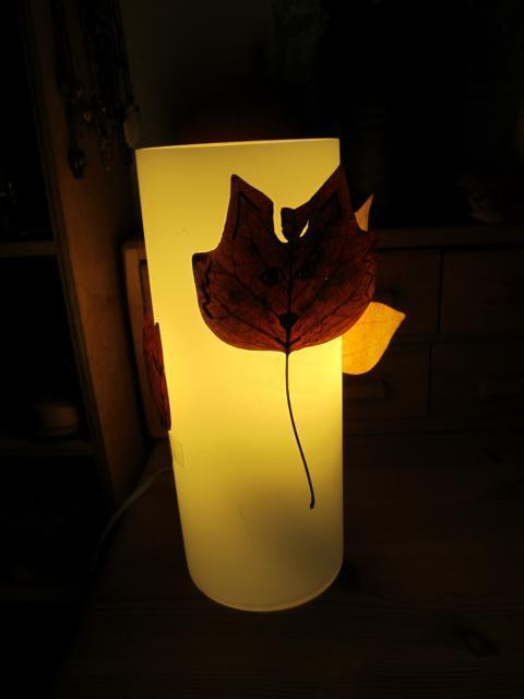 Fuchslampe
