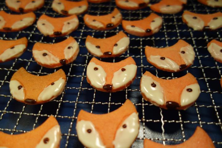 Fuchsplätzchen