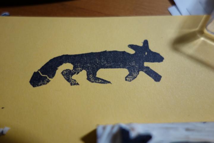fox diy